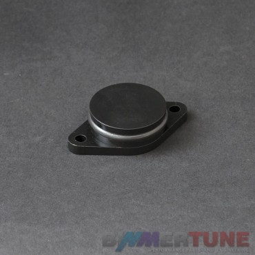 BMW swirl flap blanking plate 33mm