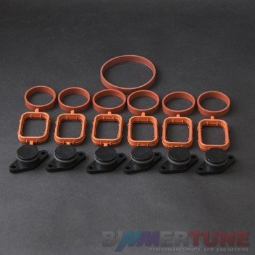 BMW swirl flap blanks 22mm 6pcs and manifold gaskets for 330d 530d and other models