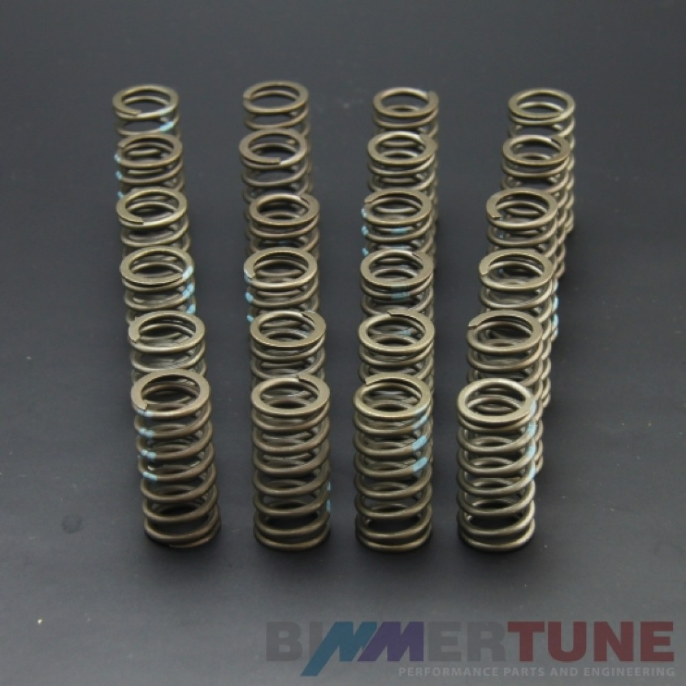 BMW diesel performance valve springs 330d 530d and other (M57 M57N M57N2 engines)